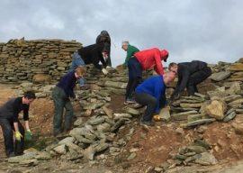 Sheepdyke Restoration Project