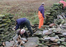 Support the Sheepdyke Restoration